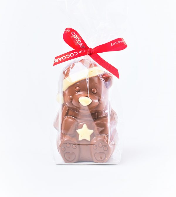 milk chocolate bear in bag with ribbon