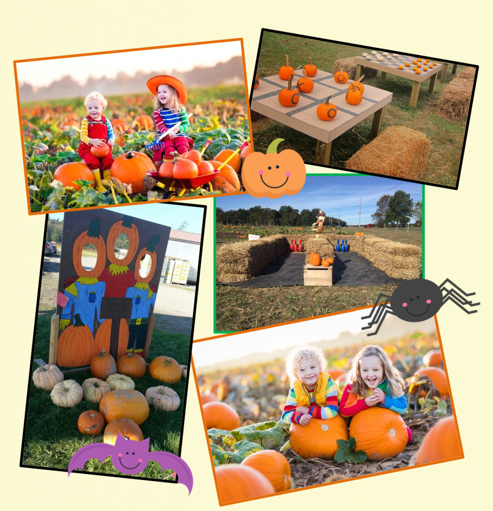 picture collage of pumpkin patch activities