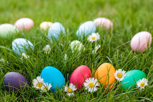 colourful eggs in grass
