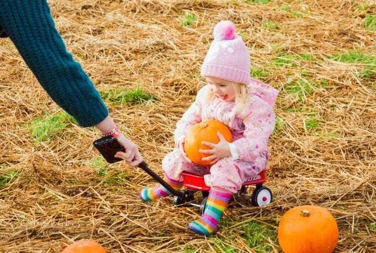 girl in barrow with pumpkin
