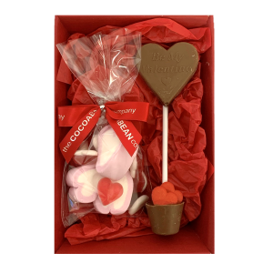 valentines sweets and double lollipop